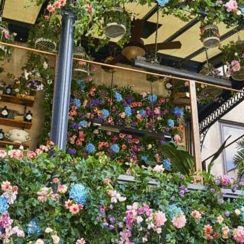 Flower garden/terrace for private meetings