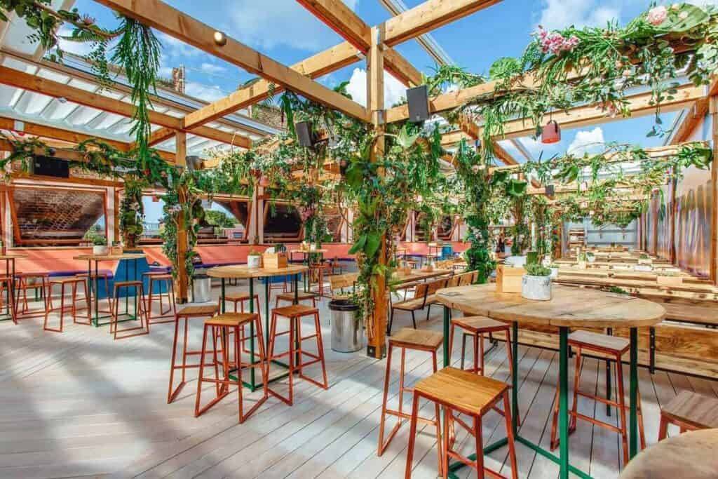 Jungle-themed rooftop terrace
