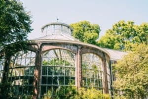 Our favourite parks in Amsterdam