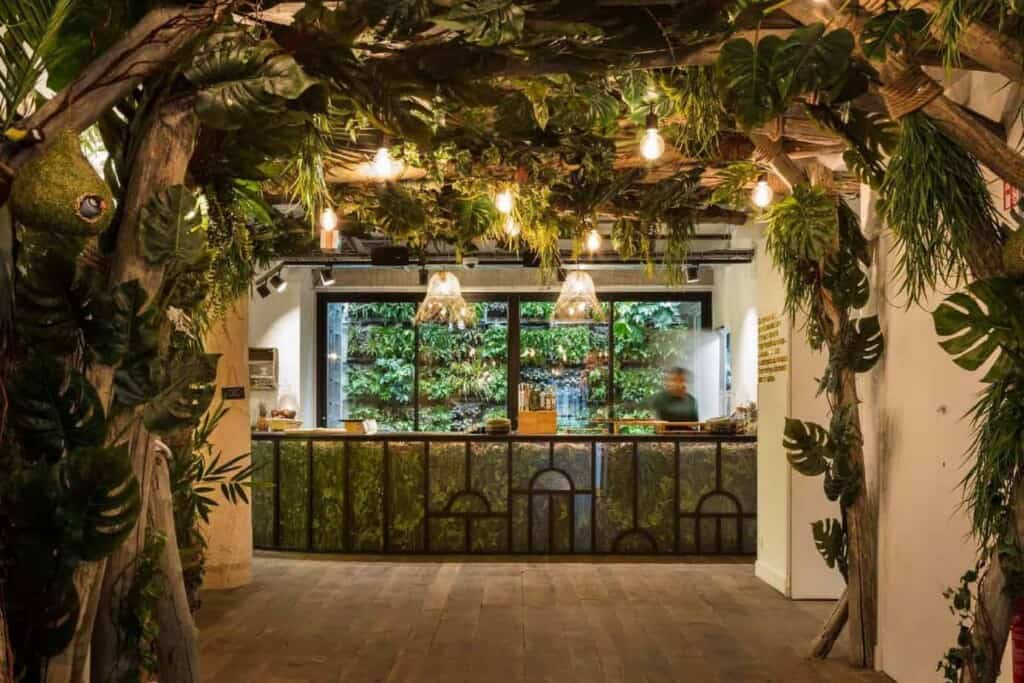 Urban jungle space with loads of green and wood