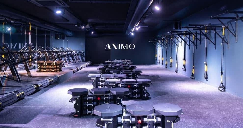 Interior of one of many boutique gyms in Brussels