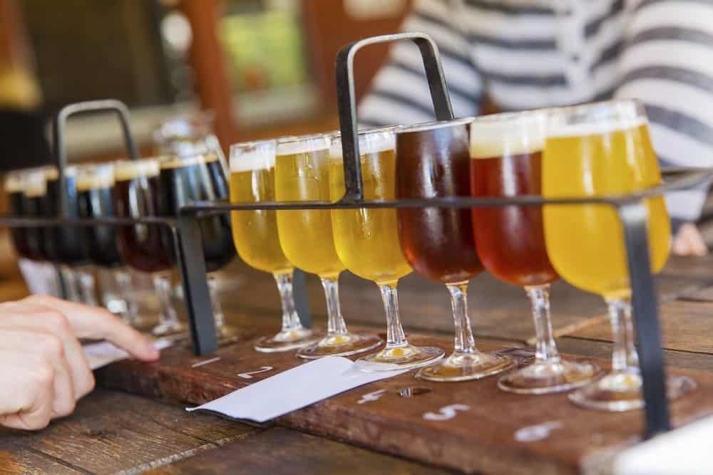 Beer Tasting Workshops in Brussels