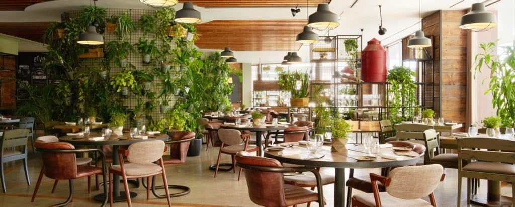 Luminous dining spot with a green touch