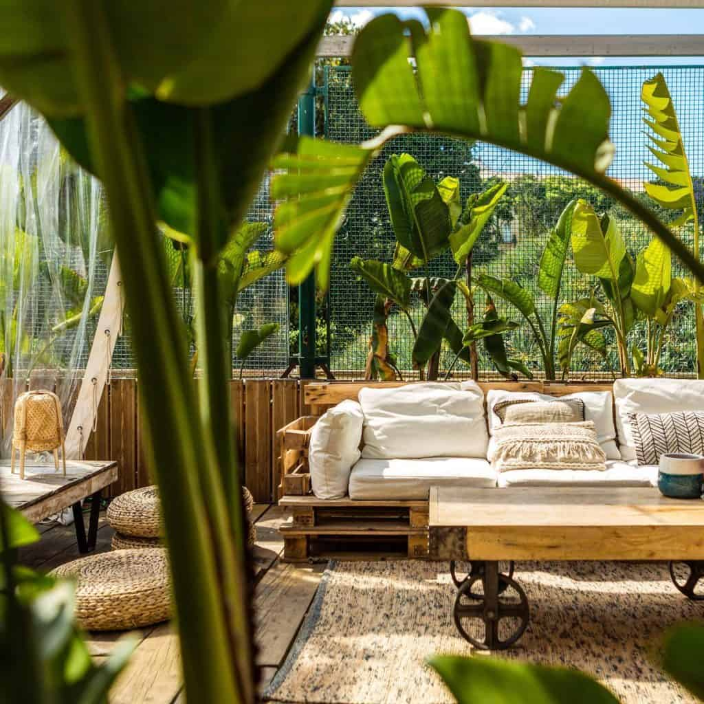 Outdoor terrace with tropical vibe