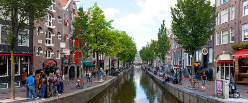 amsterdam canal with trees