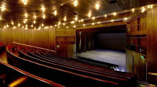Elegant Auditorium with a Stylish Dark Wood Interior