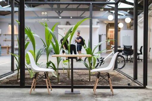 Industrial Event Venue with plants