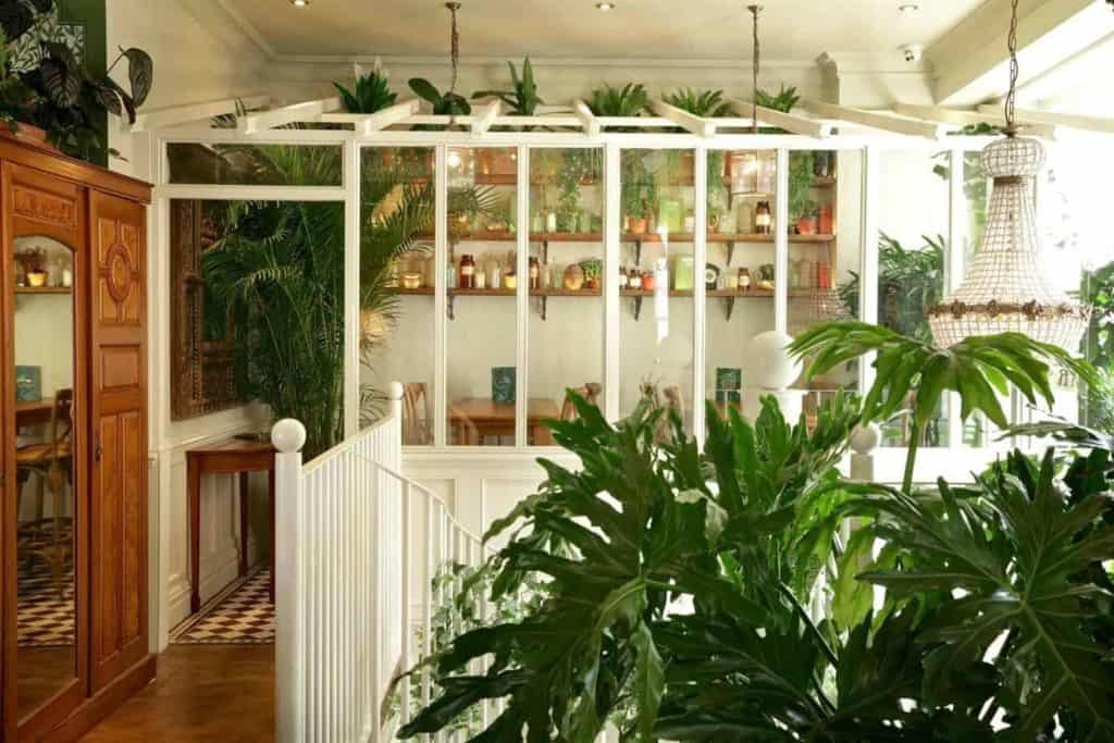 Event Space Dipped in Green and Tropical Ambience